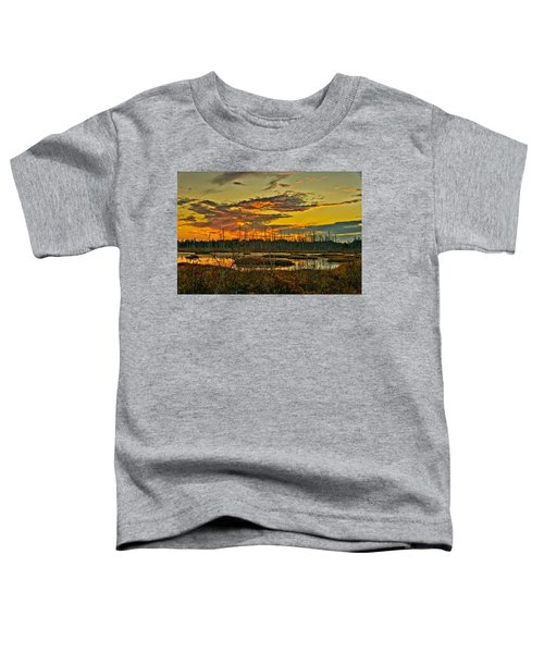 An November Sunset In The Pines Toddler T-Shirt