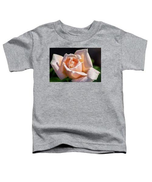 Another Beautiful Pink Rose Toddler T-Shirt