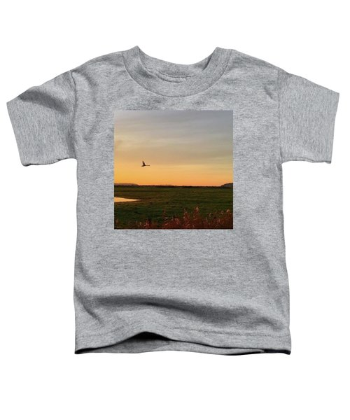 Another Iphone Shot Of The Swan Flying Toddler T-Shirt