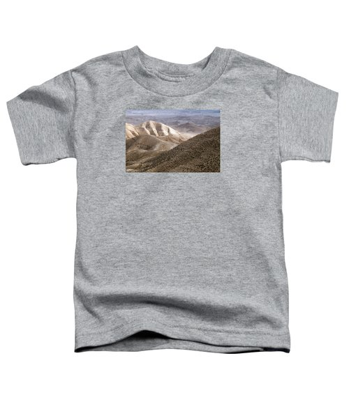 Another View From Masada Toddler T-Shirt by Dubi Roman