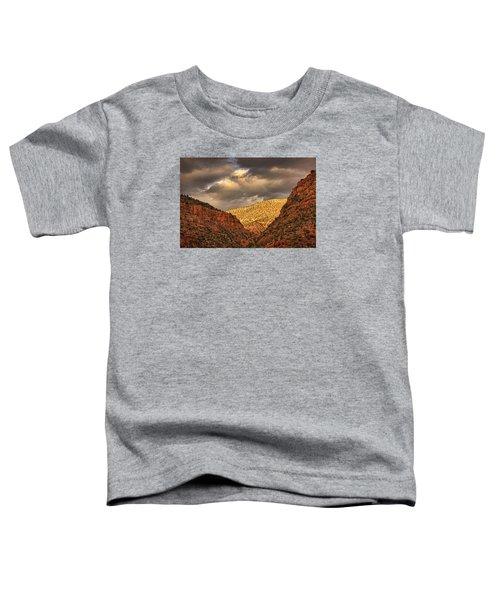 Antique Train Ride Pnt Toddler T-Shirt