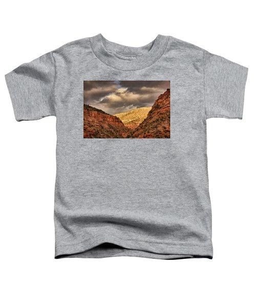 Antique Train Ride Txt Toddler T-Shirt