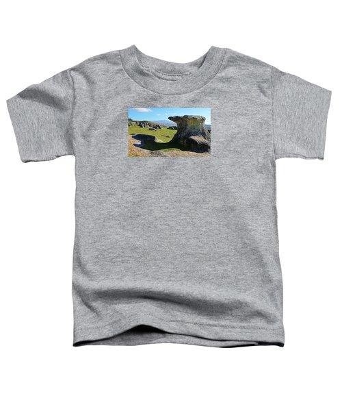 Anvil Rock Toddler T-Shirt by Nareeta Martin