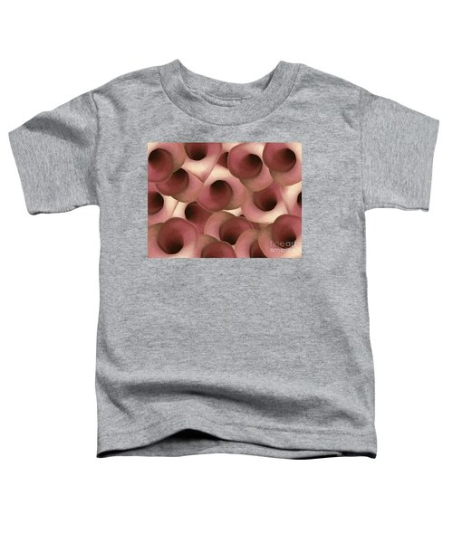 Apple Blossom Petals Toddler T-Shirt