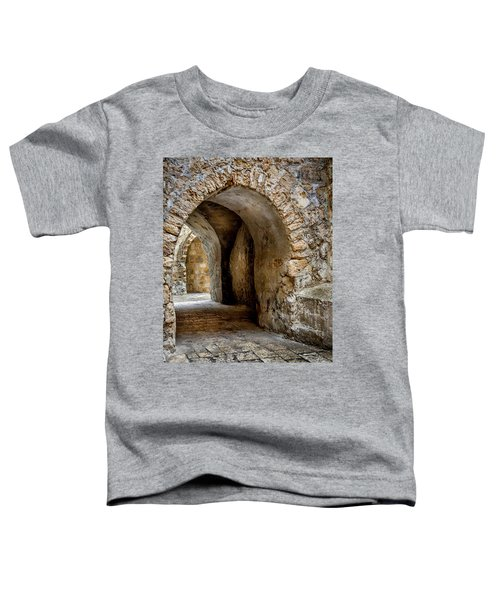 Arched Walkway Toddler T-Shirt
