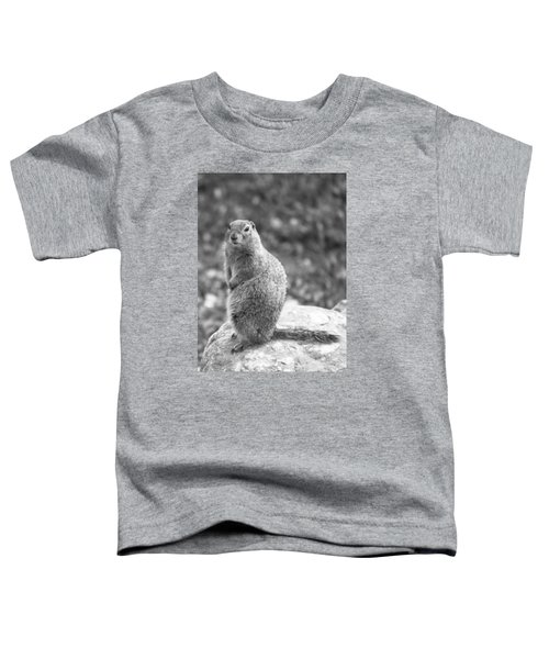 Arctic Ground Squirrel Toddler T-Shirt