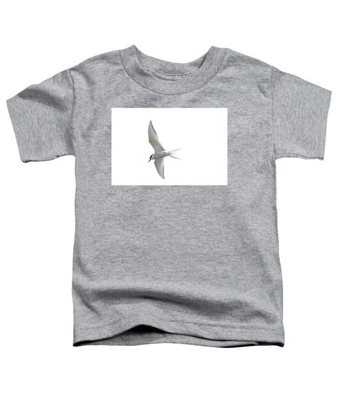 Arctic Tern Flying In Mist Toddler T-Shirt