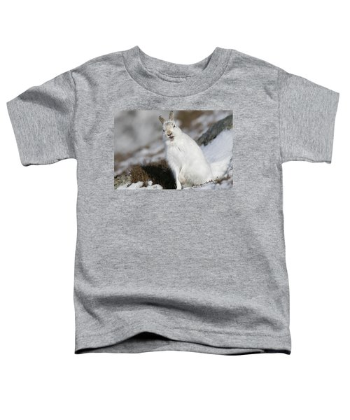 Are You Kidding? - Mountain Hare #14 Toddler T-Shirt