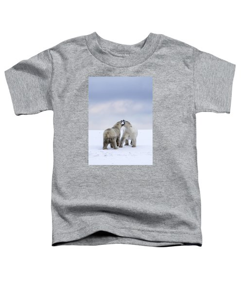 Artic Antics Toddler T-Shirt