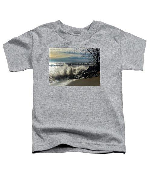 Ascent Toddler T-Shirt