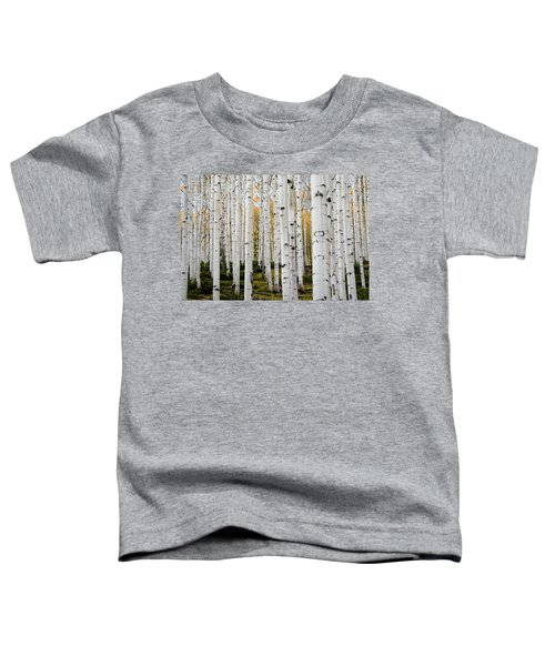 Aspens And Gold Toddler T-Shirt