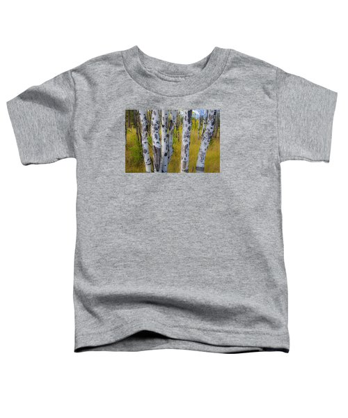 Toddler T-Shirt featuring the photograph Aspens by Gary Lengyel
