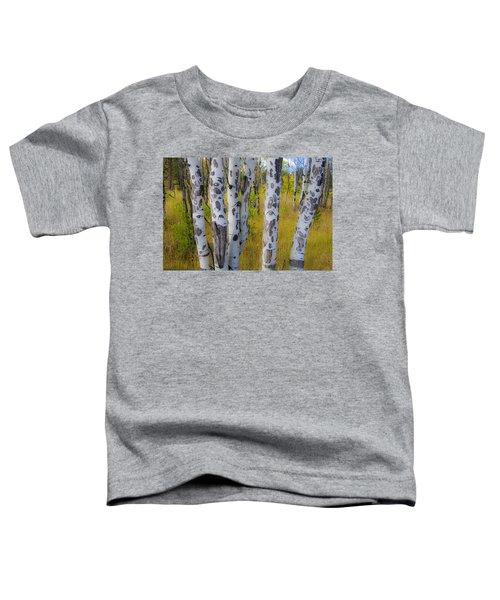 Aspens Toddler T-Shirt