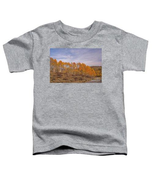 Aspens In Utah Toddler T-Shirt