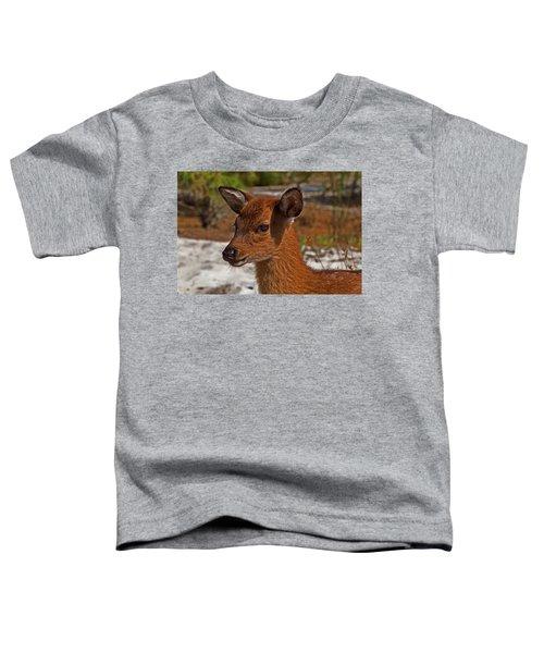 Assateague Island Sika Deer Fawn Toddler T-Shirt
