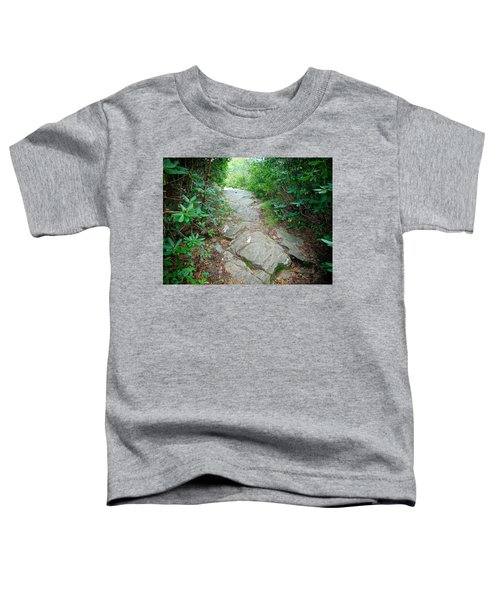 At-trail Blazes Toddler T-Shirt