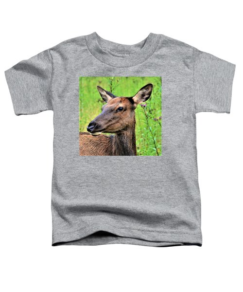 Attentive Yearling Toddler T-Shirt