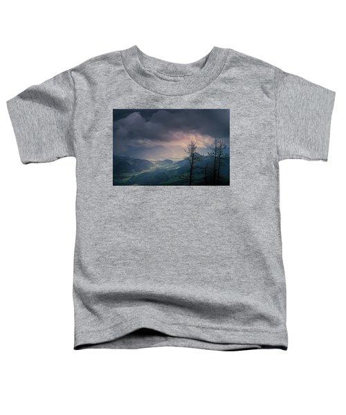 Austrian Alps Toddler T-Shirt