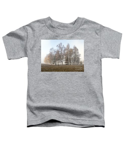 Autumn Landscape In A Birch Forest With Fog Toddler T-Shirt