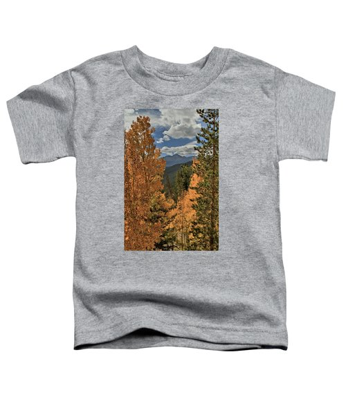 Autumn Leaves And Longs Peak Toddler T-Shirt