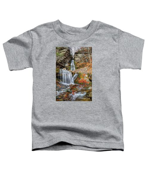 Autumns End Toddler T-Shirt