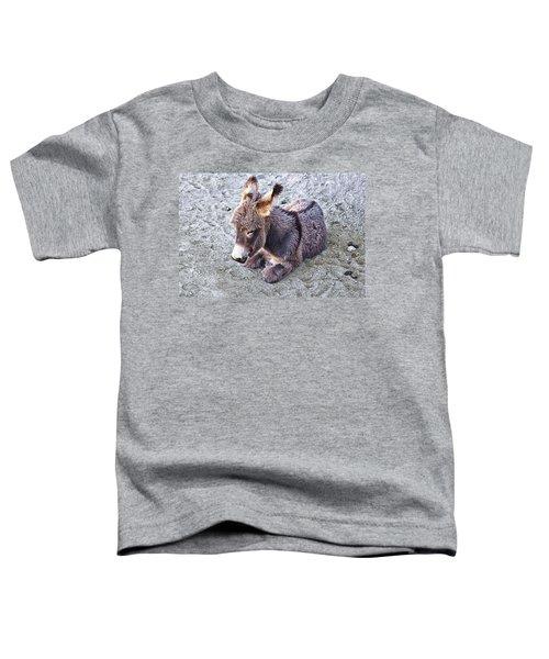 Baby Burro Toddler T-Shirt