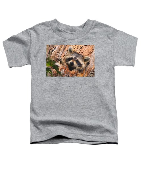 Baby Raccoon Toddler T-Shirt