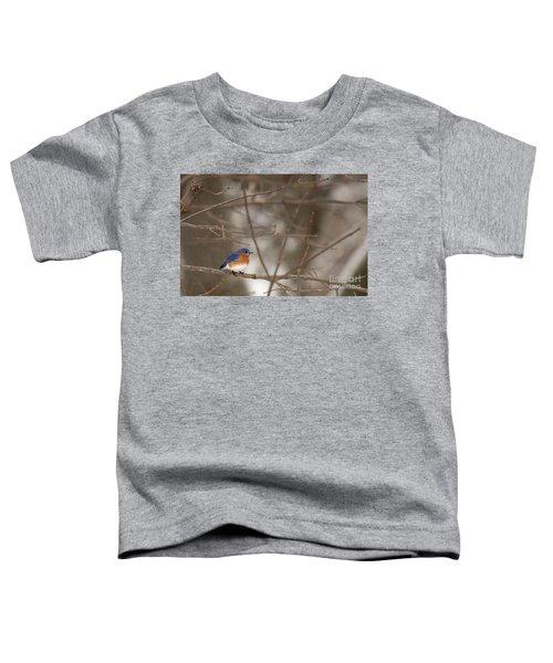 Backyard Blue Toddler T-Shirt