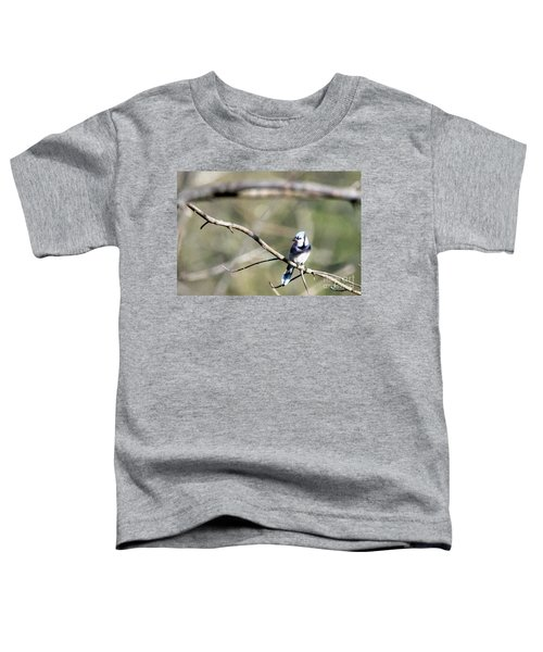 Backyard Blue Jay Oil Toddler T-Shirt