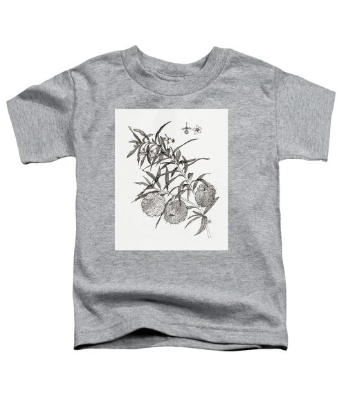 Toddler T-Shirt featuring the drawing Balloon Plant by Judith Kunzle