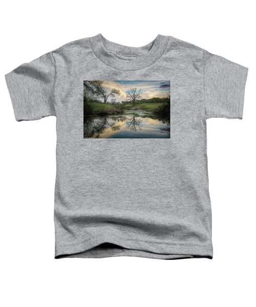 Bare Tree Reflections Toddler T-Shirt