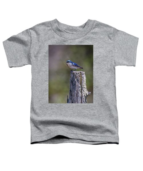 Tree Swallow Toddler T-Shirt
