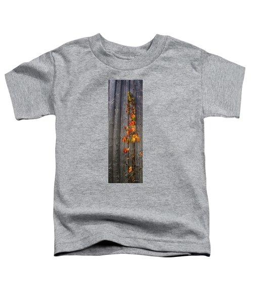 Barnyard Vine Toddler T-Shirt