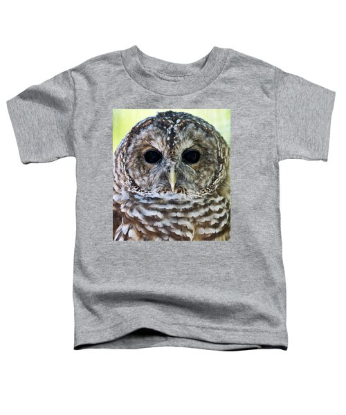 Barred Owl Closeup Toddler T-Shirt