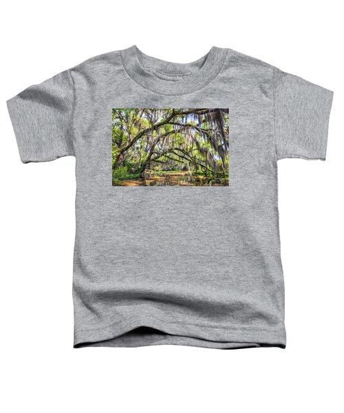 Bayou Cathedral Toddler T-Shirt