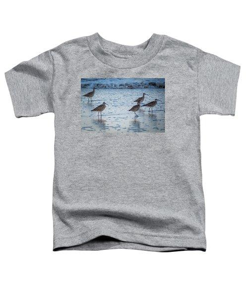 Beach Birds Toddler T-Shirt