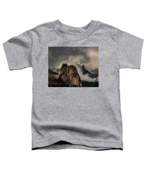 Beacon Rock Toddler T-Shirt