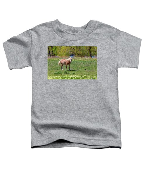 Beautiful Blond Horse And Four Little Birdies Toddler T-Shirt by James BO Insogna