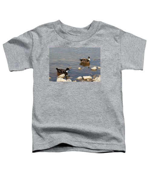 Beautiful Ducks Toddler T-Shirt