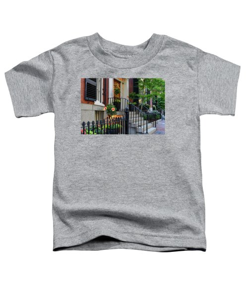 Beautiful Entrance Toddler T-Shirt