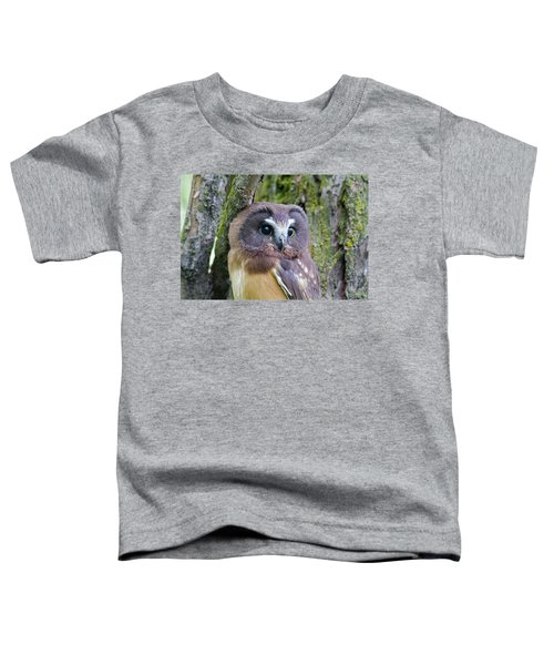 Beautiful Eyes Of A Saw-whet Owl Chick Toddler T-Shirt