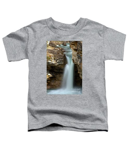 Beauty Creek Stanley Falls Toddler T-Shirt