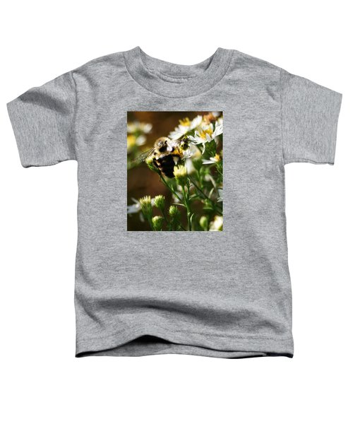 Bee And Spotted Cucumber Beetle On Aster Toddler T-Shirt