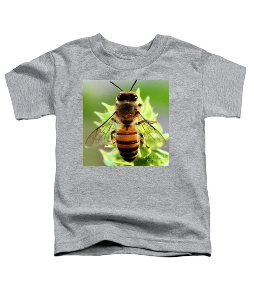 BEE Toddler T-Shirt