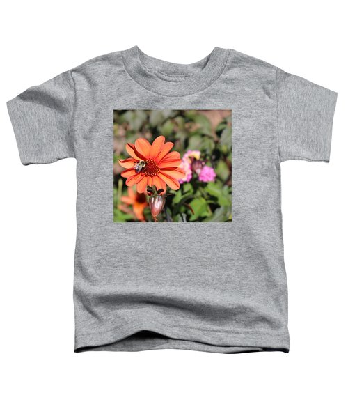 Bees-y Day Toddler T-Shirt