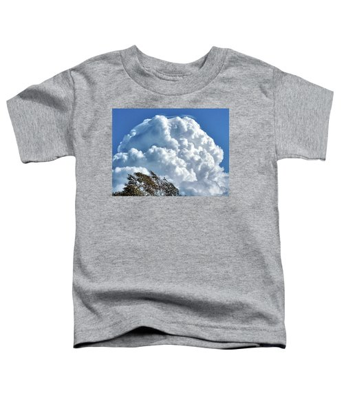 Before The Storm Toddler T-Shirt