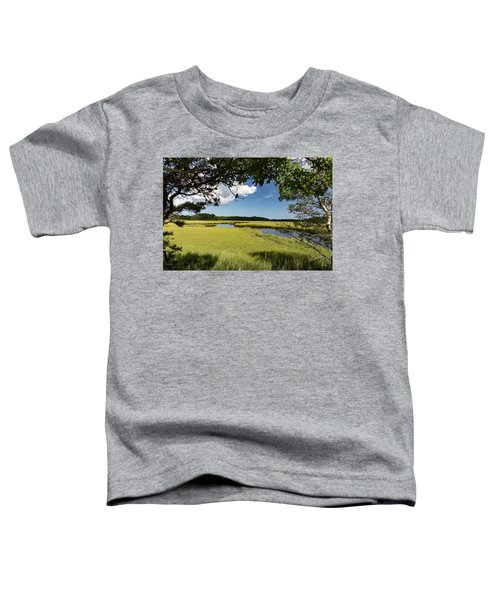 Bells Neck Road Toddler T-Shirt