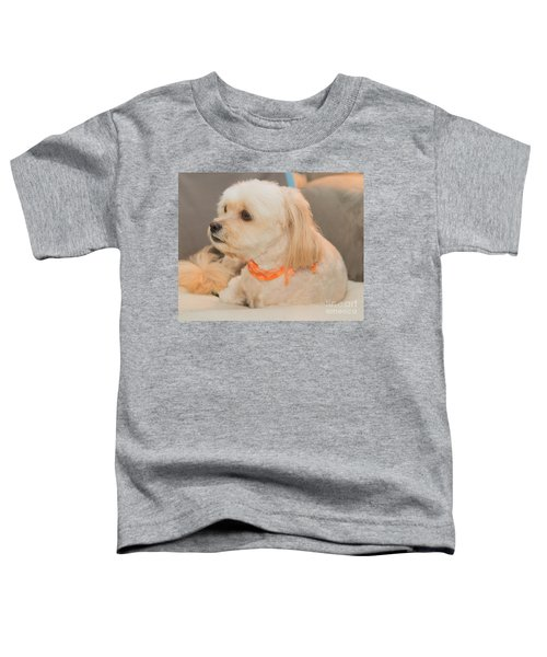 Benji On The Look Out Toddler T-Shirt