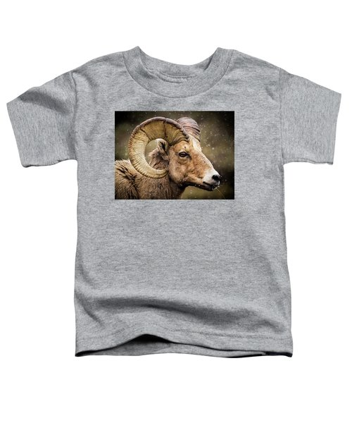 Bighorn Sheep In Winter Toddler T-Shirt