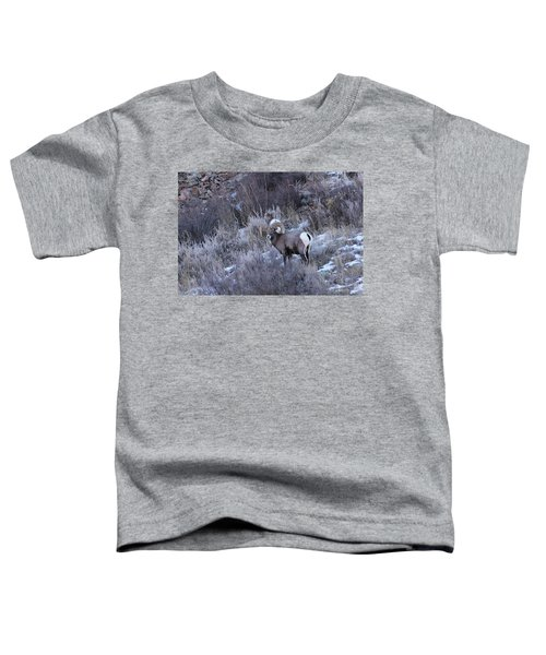 Bighorn8 Toddler T-Shirt